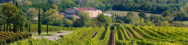 Castelli del Grevepesa I 50026 San Casciano Val di Pesa; Via Gabbiano 34