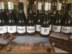 Weinprobierpaket aus Neuseeland mit 6 TOP- Weinen