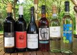 6 Weinflaschen aus der internationalen Weinwelt